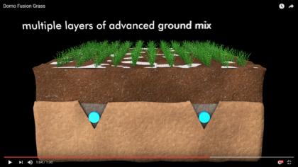 video Domo Fusion Grass